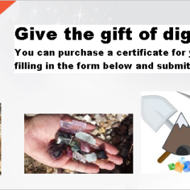 "FAMILY – Digforgems.com ""Dig-Certificate"" Voucher (Ocean View Mine)."
