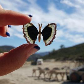 Himalaya Tourmaline Butterfly Pendant